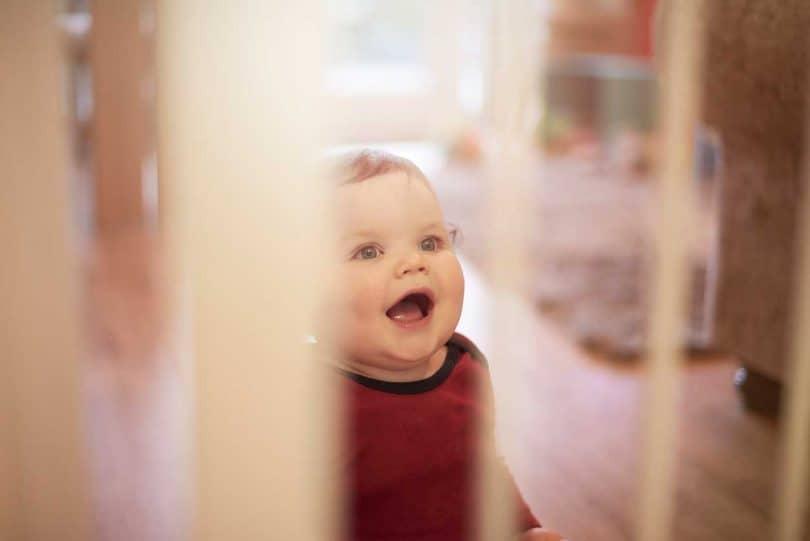 Baby_gate_baby