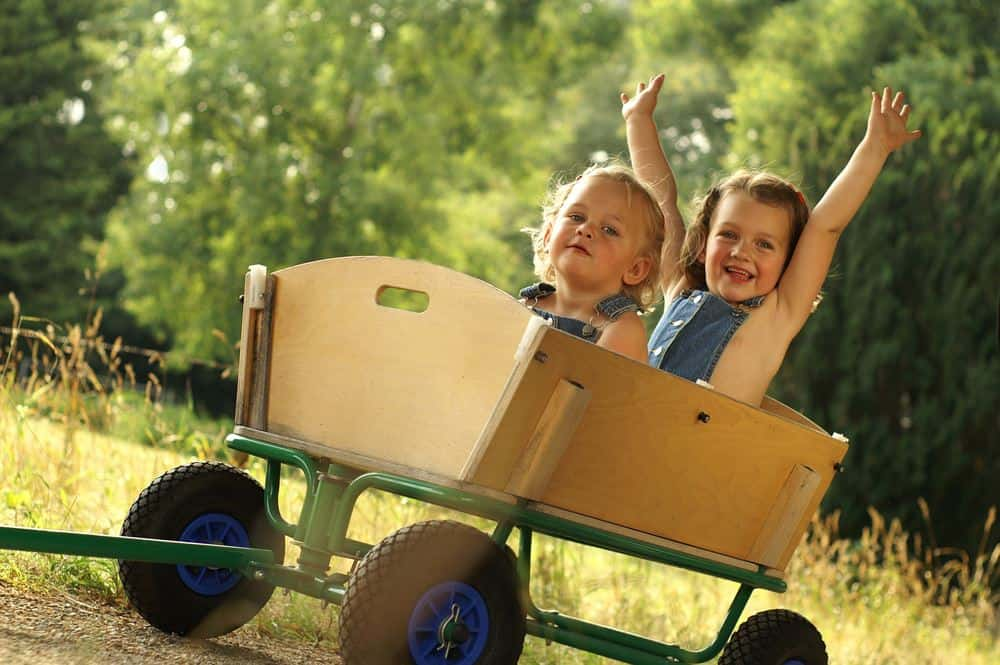 5 Best Wagons For Kids You Can Buy in 2019 | Kids wagon